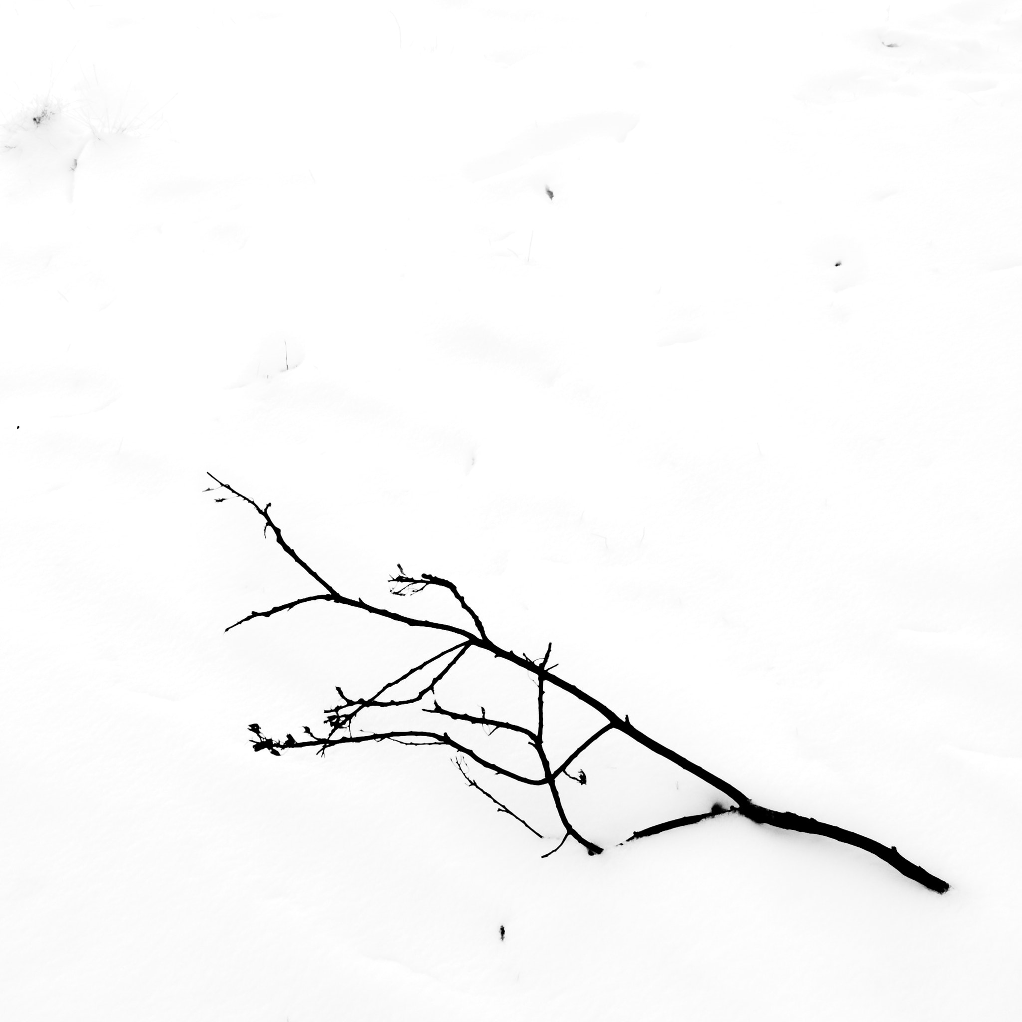 Photograph Snow Abstractions 4 by Chris Maskell on 500px
