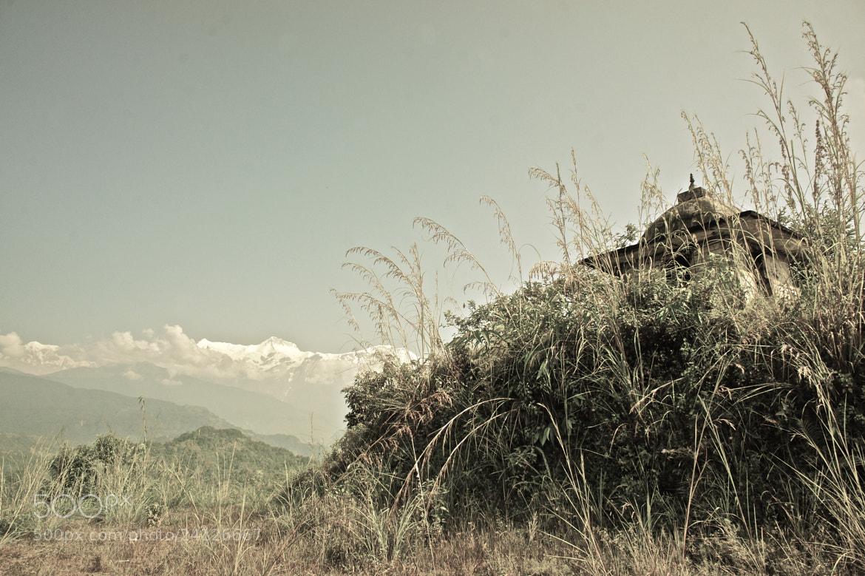 Photograph Hidden Temple by David Hollander on 500px