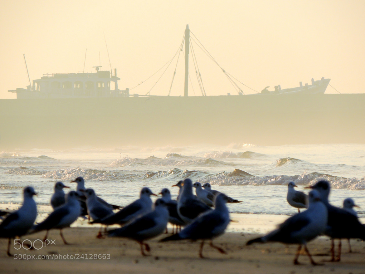 Photograph Shades of Sea by Parth Parmar on 500px
