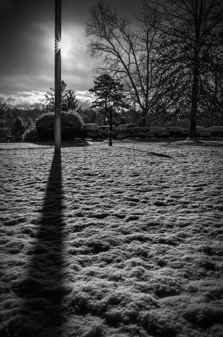 Photograph Snowy Shadows by Lori Coleman on 500px