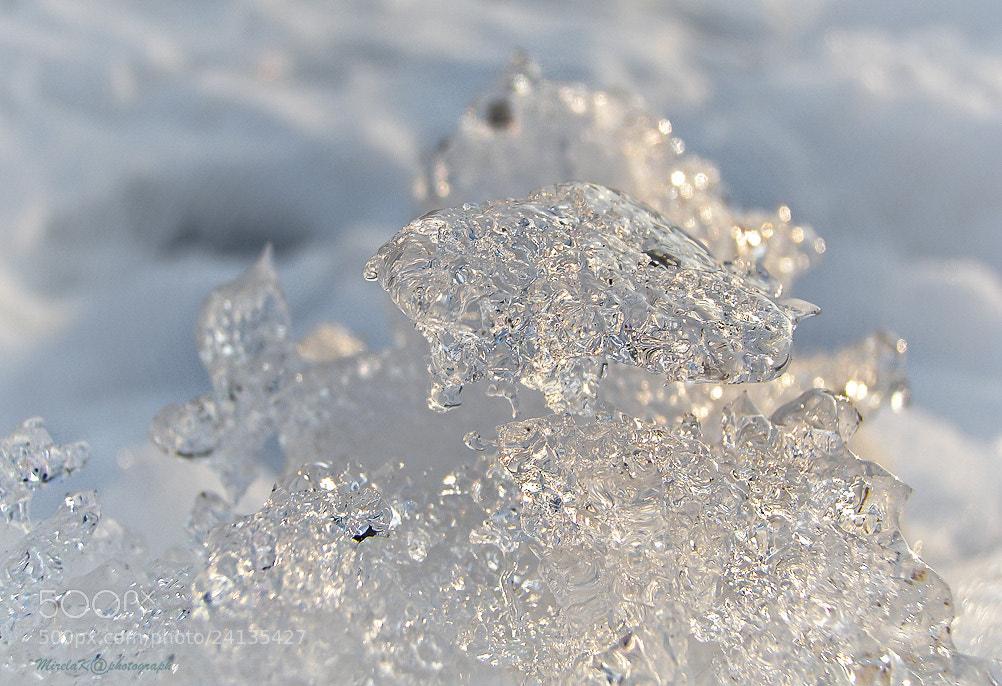 Photograph cold beauty by mirela korolija on 500px