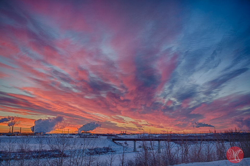Photograph Can't stop taking pictures of this sky! by Kasia Sokulska on 500px