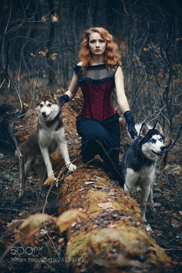 Photograph Other twilight by Oxana Oleynichenko on 500px