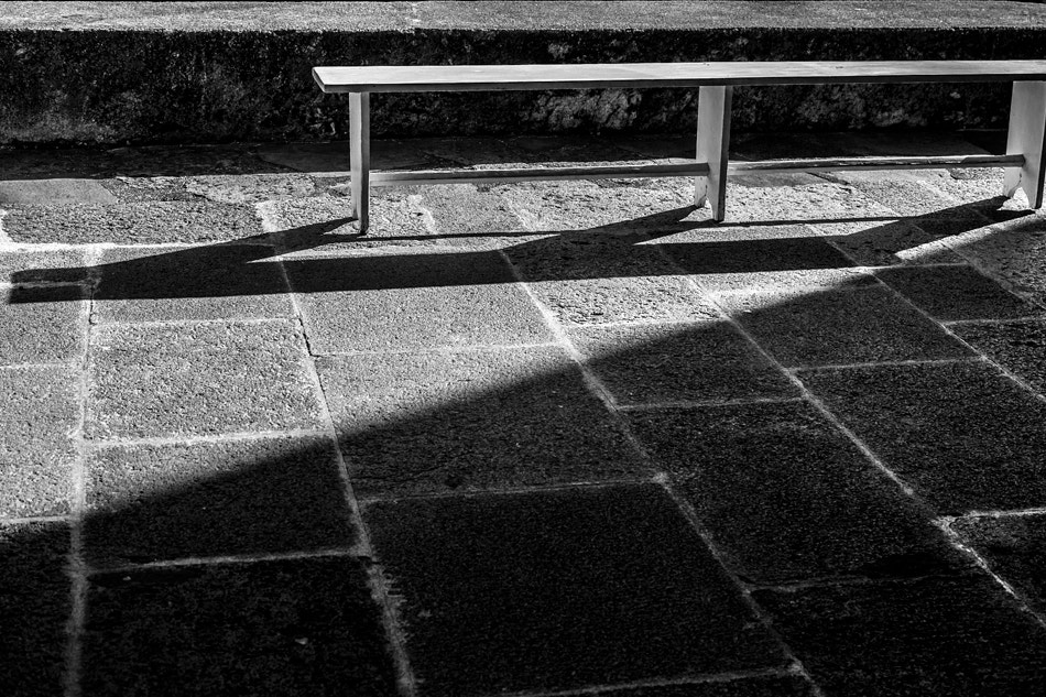 Photograph The  bench by José Manuel Gouveia on 500px