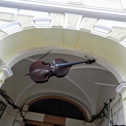 Violin, Nikon COOLPIX S800c