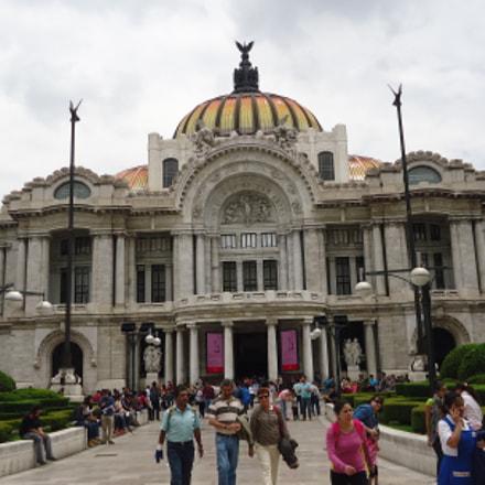 Museo de Bellas Artes, Sony DSC-W610