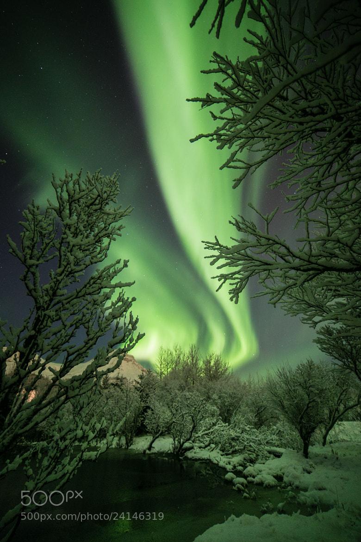 Photograph Green Light by Jon Gretarsson on 500px