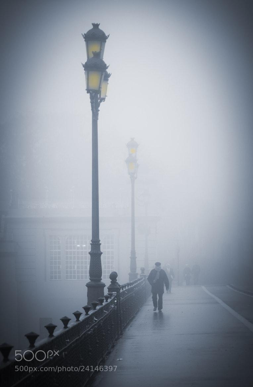 Photograph Fog by Hani Latif Zaloum on 500px