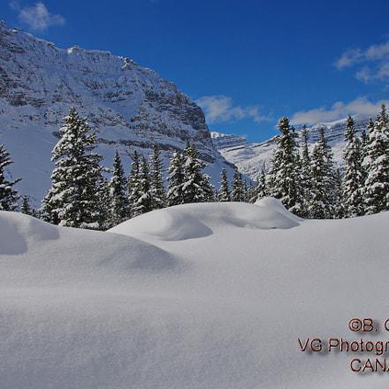 Winter Wonderland, Pentax K-5 II S, smc PENTAX-DA 18-250mm F3.5-6.3 ED AL [IF]