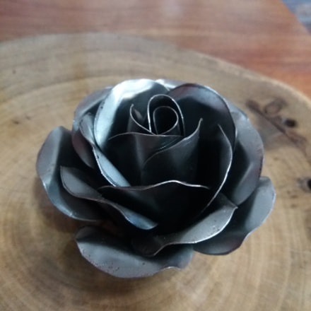 Black Iron Rose