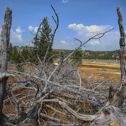 Yellowstone Nationalpark / September 2017, Canon IXUS 220HS