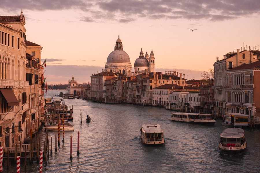 Venetian Dream by Rene Chaffins on 500px.com