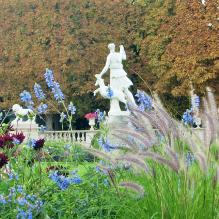 Jardin du Luxembourg, Nikon E4200