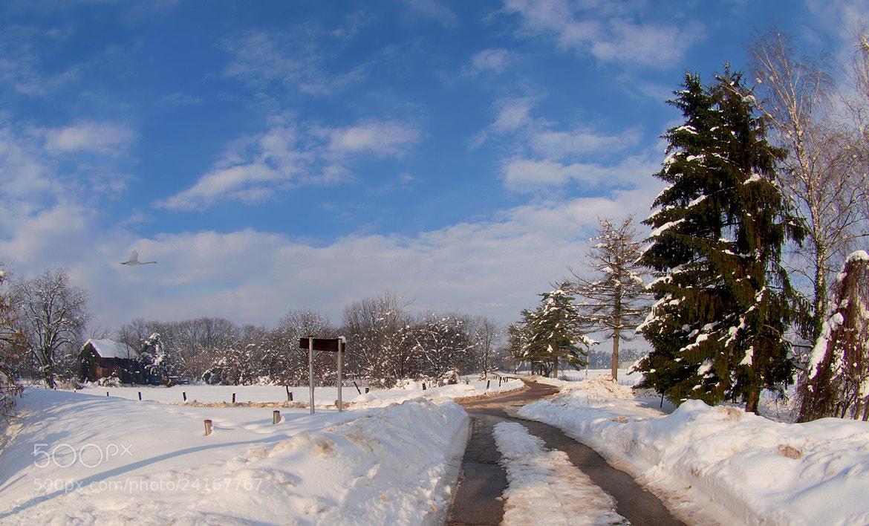 Photograph SNOWY FAIRYTALE by Mirna Vidić on 500px