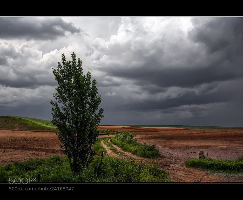 Photograph Camino de luz by Isidoro M on 500px