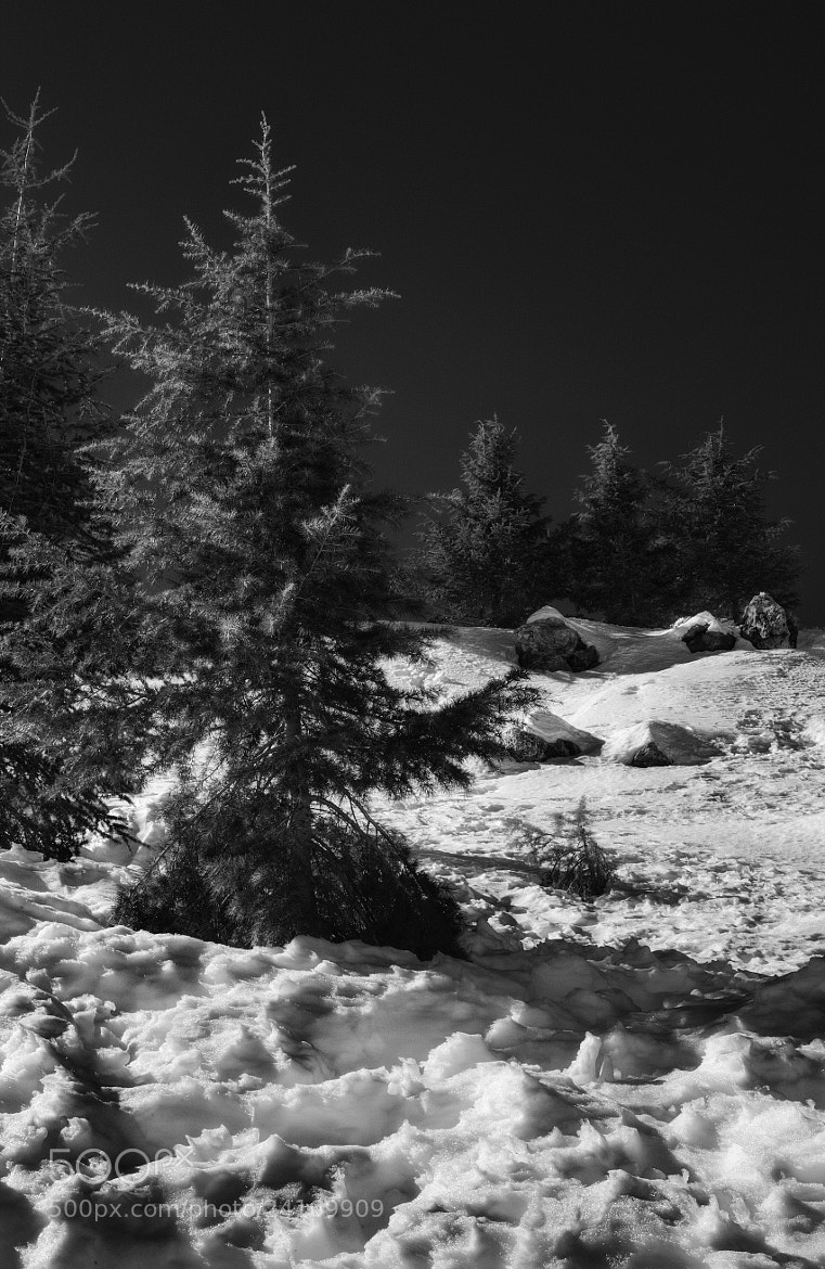 Photograph The Snowscape Series - IV by Asi Yacobovitch on 500px