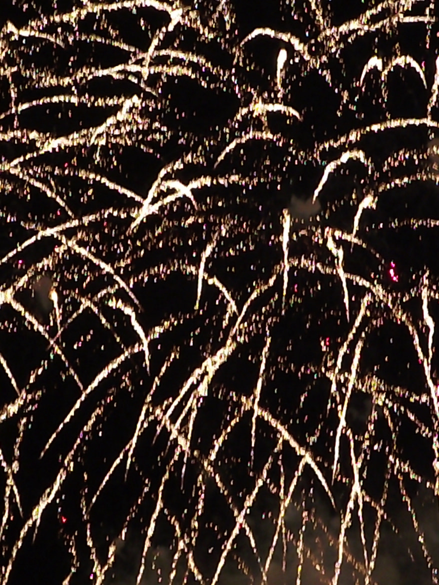 Photograph raining fireworks by Shirley Tucker on 500px
