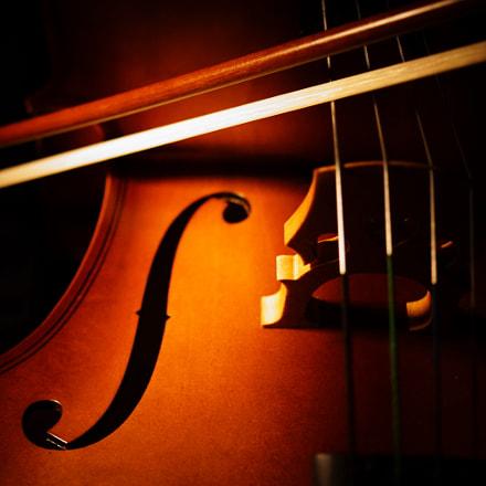 Cello song, Sony NEX-7, Sony DT 30mm F2.8 Macro SAM (SAL30M28)