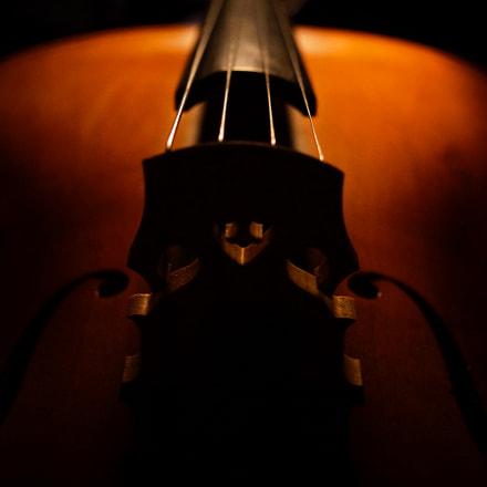 Cello symmetry, Sony NEX-7, Sony DT 30mm F2.8 Macro SAM (SAL30M28)