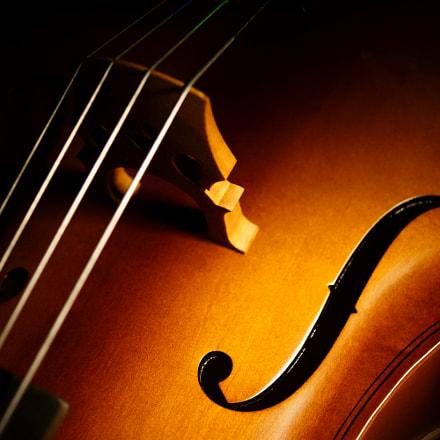 Cello harmony, Sony NEX-7, Sony DT 30mm F2.8 Macro SAM (SAL30M28)