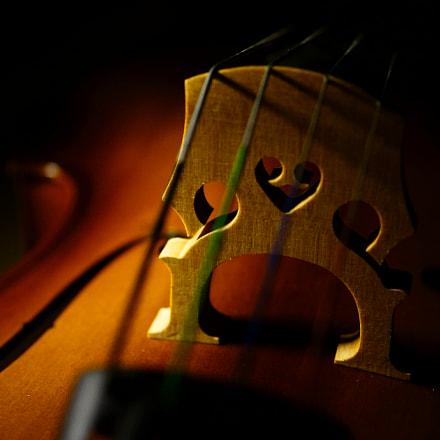 Cello heart, Sony NEX-7, Sony DT 30mm F2.8 Macro SAM (SAL30M28)