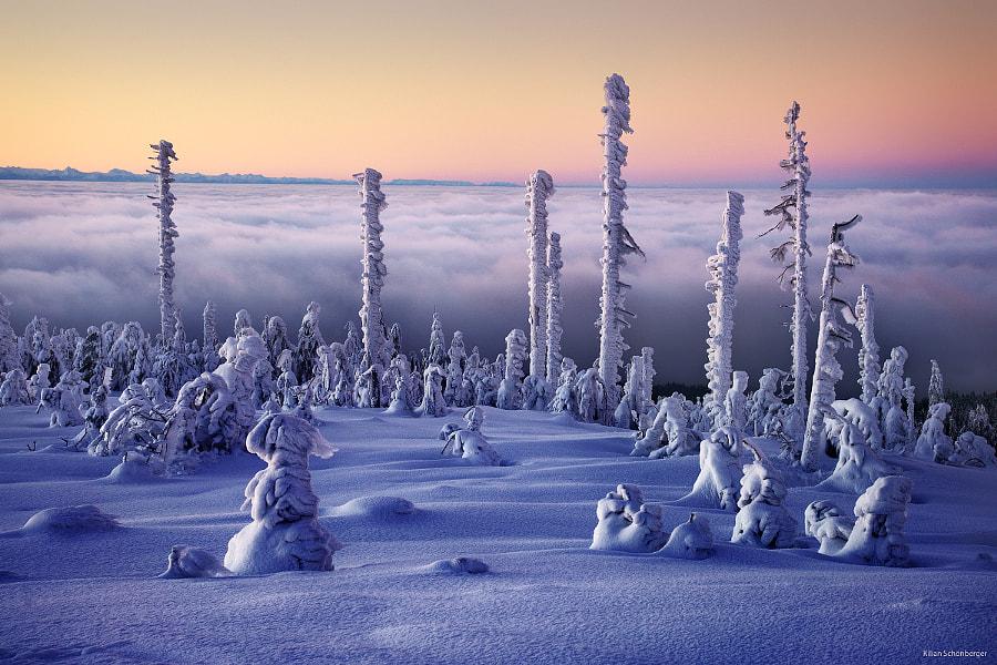 Frozen by Kilian Schönberger on 500px.com