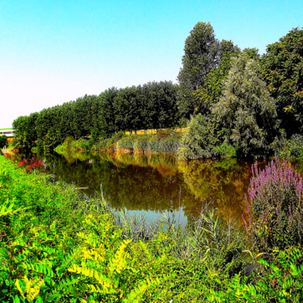 Paesaggio stupendo lungo le, Fujifilm FinePix JX250
