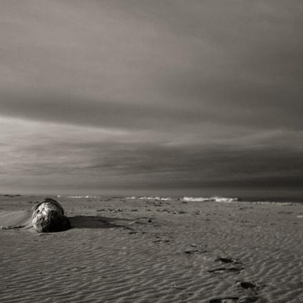 Winter scene on Gazos, Canon EOS D60