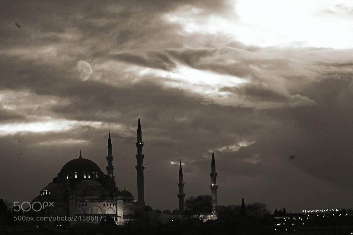 Photograph Untitled by Fatih  Yıldırım on 500px