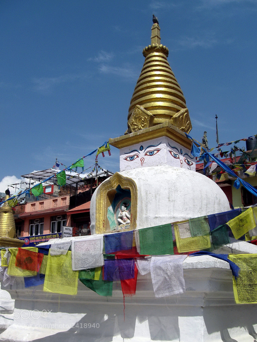 Photograph  Stupa and Prayer Flags by Tammy Winand on 500px