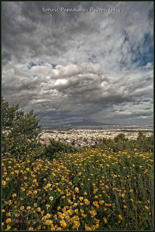 Photograph Grey and yellow... by Sotiris Papadimas on 500px