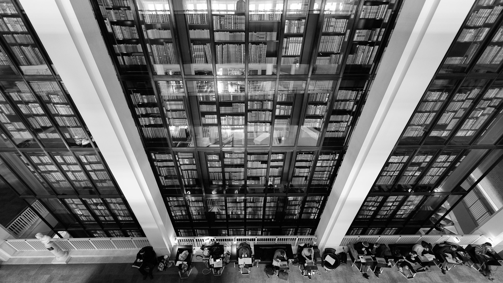 Photograph Book Worms by Sean Batten on 500px