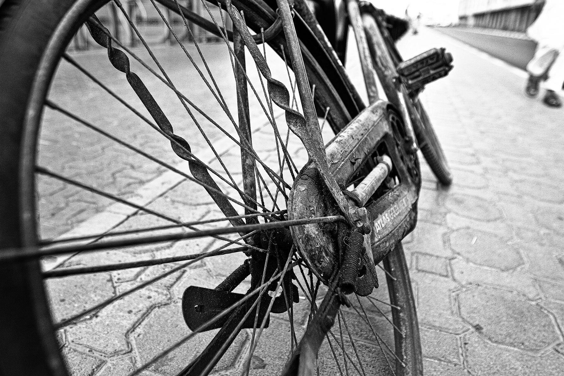 Photograph The Cycle  by Sermed Altaf on 500px