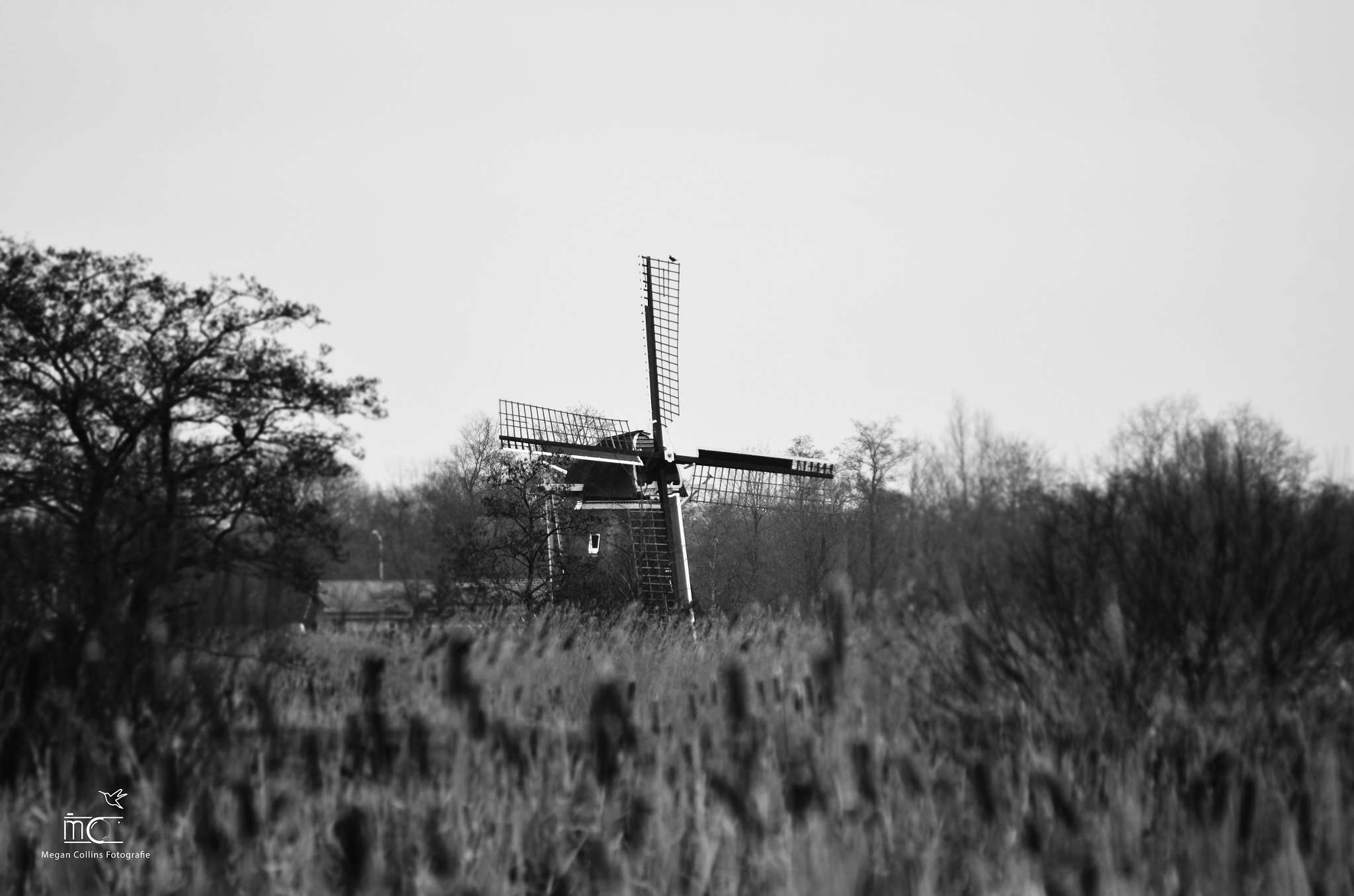 Photograph Dutch Windmill by Megan Collins on 500px