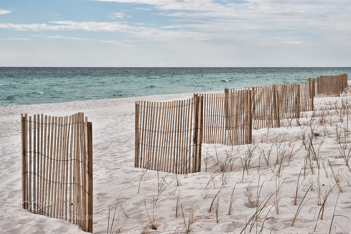 Photograph Quiet Beach by Sharon Smith on 500px