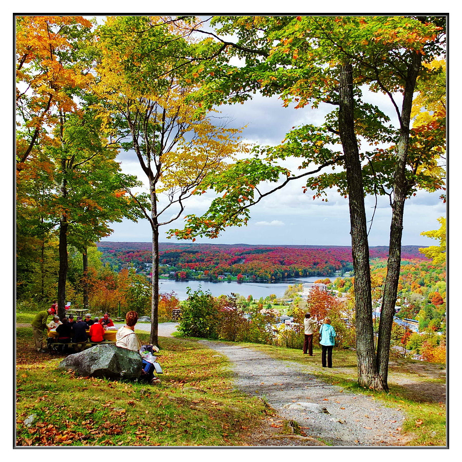 Fall Lookout - Haliburton Highlands -
