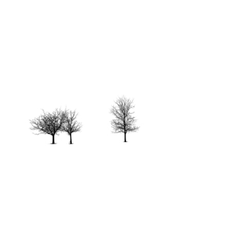 Winter, Nikon D610