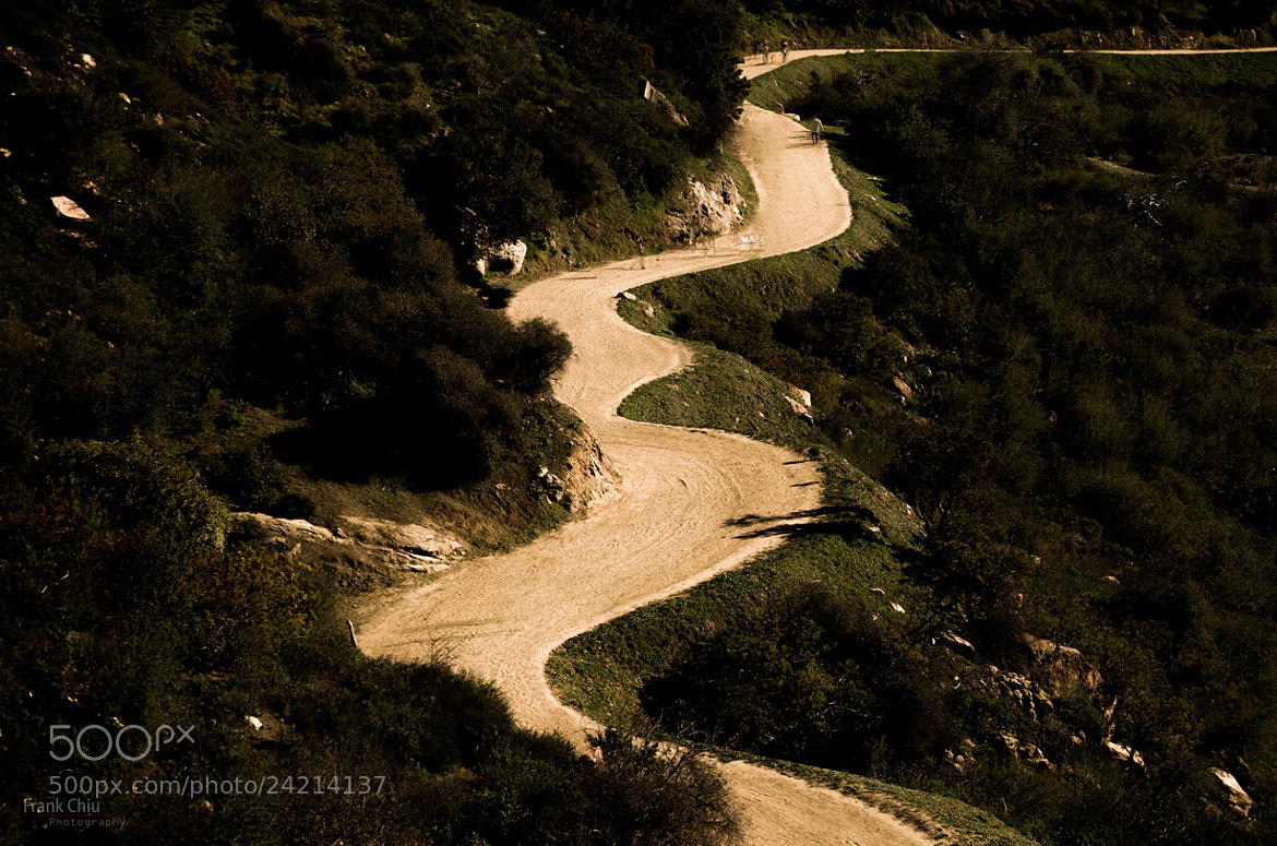 Photograph Winding Hike by Frank Chiu on 500px
