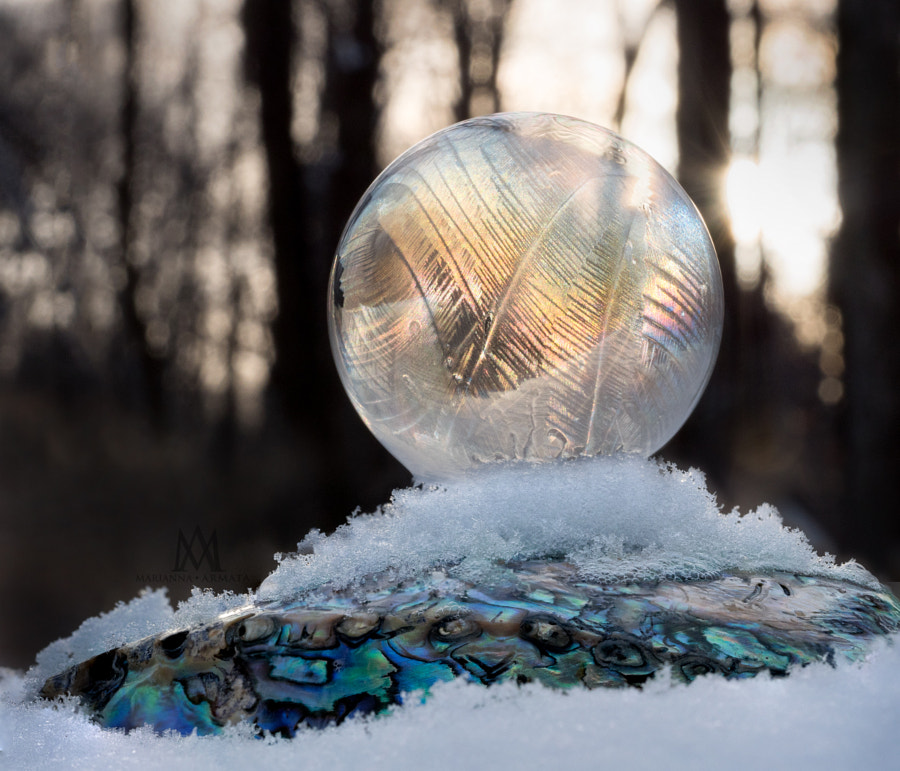 winter sunset bubble