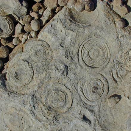Sandstone concretions, Nikon E800
