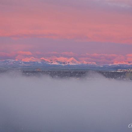 Fog and Sunrise, Canon EOS DIGITAL REBEL XSI, Canon EF 75-300mm f/4-5.6 IS USM