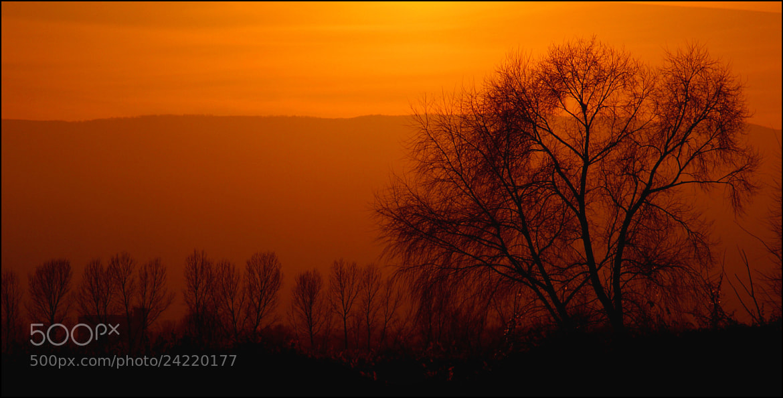Photograph Sense of Red by Kounoupis Anastasios  on 500px