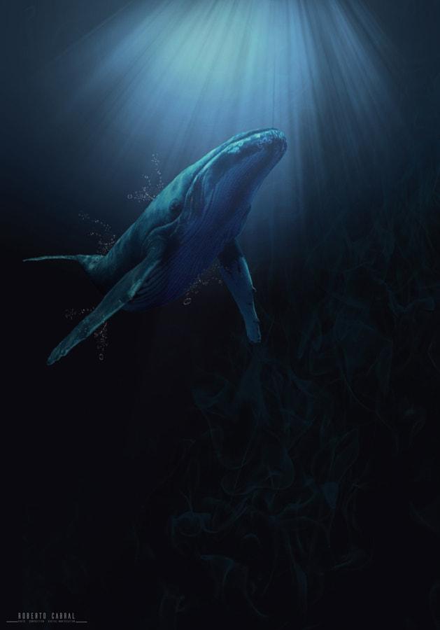 Waterworld de Roberto Cabral │Image & Photography en 500px.com