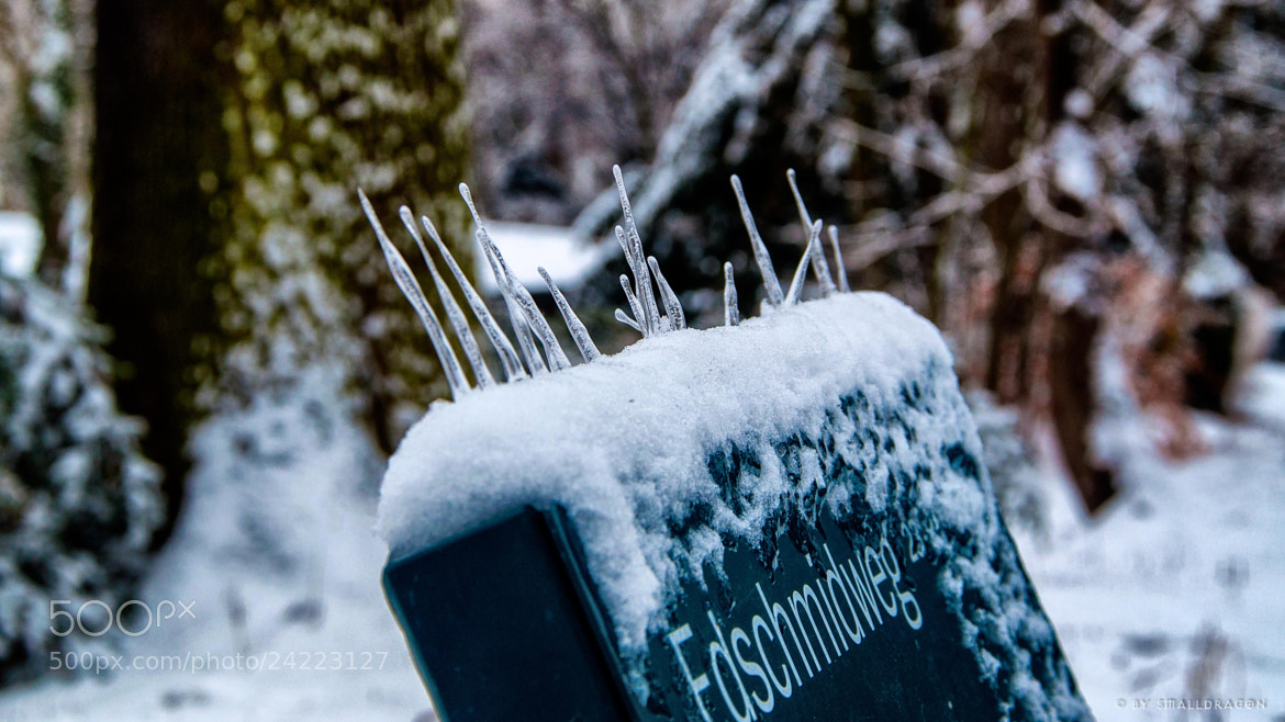 Photograph Rising Icicles by Sven Reitis on 500px