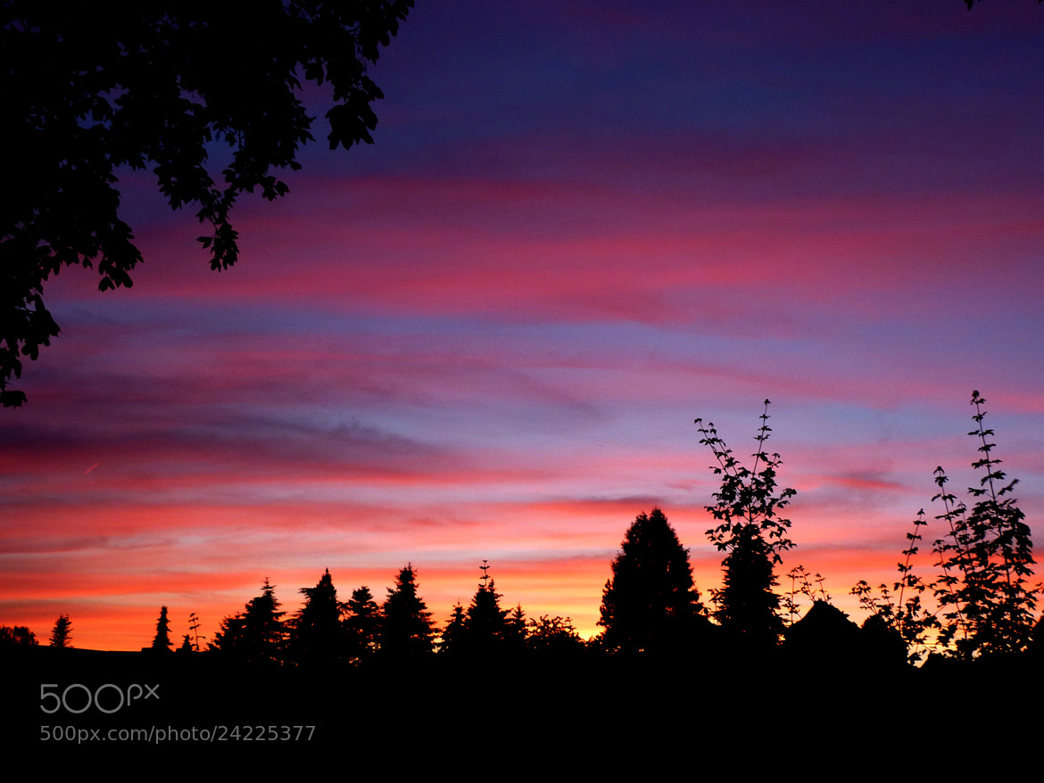 Photograph Sunset in Germany by Bert Kohlgraf on 500px