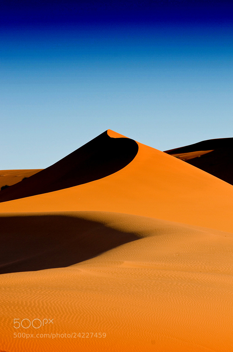 Photograph Dune No.666 by Milan Schirlo on 500px