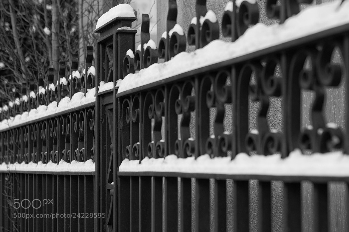 Photograph Snow Fence by Ash Furrow on 500px