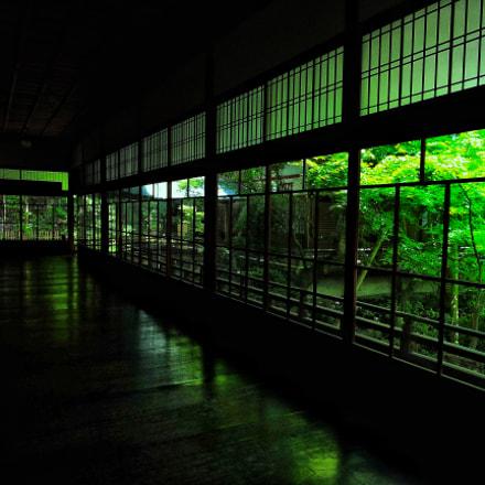 Green room, Nikon COOLPIX P600