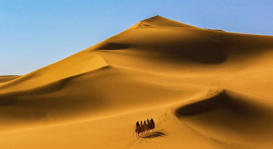 沙漠孤影, автор — Pirate_ZY  на 500px.com