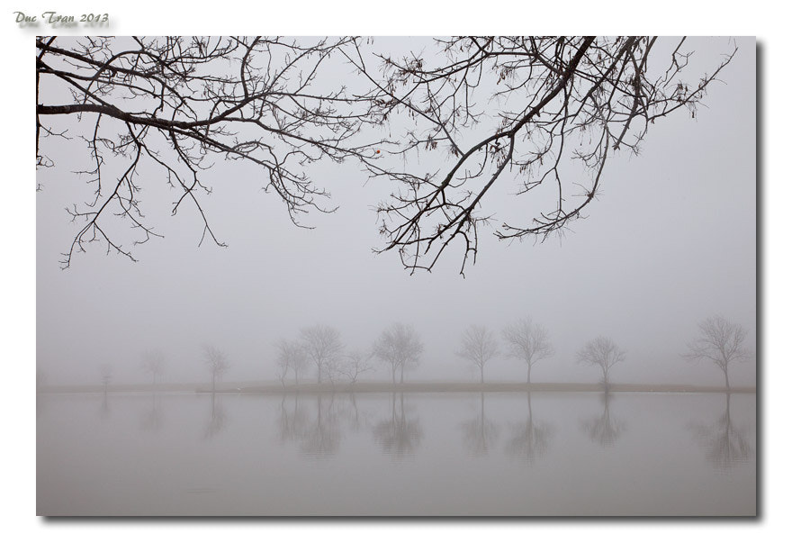 Photograph Foggy morning 02 by Duc Tran on 500px